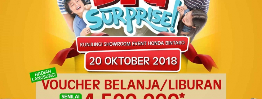Honda Big Surprise